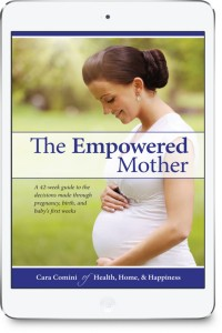the empowered mother ebook